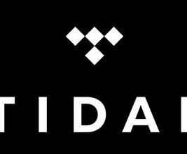 tidal feature